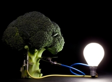 broccoli-ideaweb